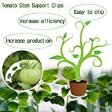 FT 90 Degree Plant Bender for Low Stress Training