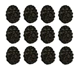 Zeckos Cast Iron Drawer Pulls Rustic Brown Woodland Pine Cone 12 Piece Cast Iron Drawer Pull Set 2.5 X 2 X 1.5 Inches Brown