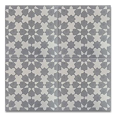 "Moroccan Mosaic & Tile House CTP04-07 Ahfir 8''x8'' Handmade Cement Tile, 8""x8"", Gray and White"