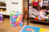 Kids' Ball Pit Balls (200) & Zippered Tote by SimpleLyfe | Preschool & Kindergarten Playground Toys for Toddlers & Babies | Fun Outdoor / Indoor Play | Phthalate-Free Plastic (200 Balls)