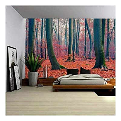 Wonderful Expert Craftsmanship, Beautiful Red and Orange Leaf Covered Forest Wall Mural, With a Professional Touch