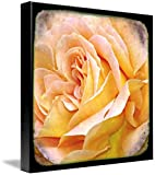 Wall Art Print entitled Through The Viewfinder Photography -Flower I by Ricki Mountain