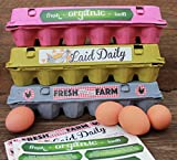 18 Egg Cartons, Blank Containers With Bonus Egg