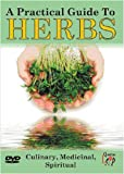 The Practical Guide To Herbs