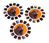 View Master Disney Dinosaur Collectible 3D Reels (2000)