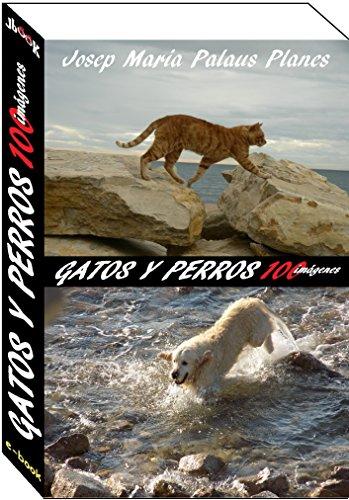 gatos y perros (100 imágenes) (Spanish Edition) by [PALAUS PLANES,
