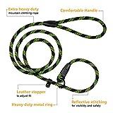 BRONZEDOG Rope Dog Leash 6ft Mountain Climbing