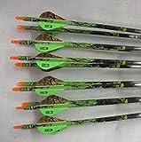 Easton Carbon Injexion 400 Deep Six Arrows w/Blazer Vanes 1 Dz.