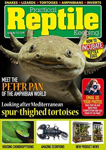 practical reptile magazine
