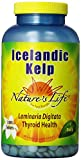Nature's Life Kelp Tablets, Icelandic, 41 Mg, 1000 Count Review