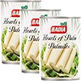 Badia Hearts of Palm Can 14 oz Pack of 3