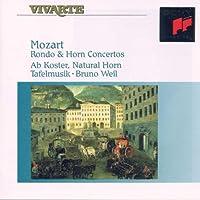 Rondo & concertos pour cor [Import anglais]
