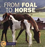 From Foal to Horse, Robin Nelson, 0822509415