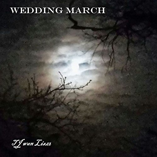 Wedding March Hochzeitsmarsch Acoustic Guitar