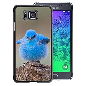 A-type Arte & diseño plástico duro Fundas Cover Cubre Hard Case Cover para Samsung ALPHA G850 (Blue Baby Chick Cute Bird Tropical Spring)