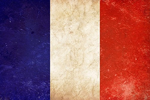 (PrintFactory 12x18 Vintage French Flag, Room Decor, Gift Ideas, Fine Art Canvas Prints, Photo Prints, Wall Art, Vintage French Flags Prints)