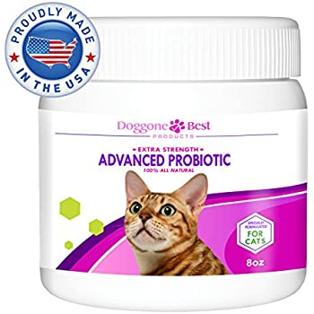 Amazoncom Proviable DC For Cats And Dogs Capsules Pet - 22 cats living better life right now