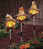 Set of 3 Whimsical Cute Autumn Harvest Scarecrow Outdoor Yard Garden Stake Christmas Decor