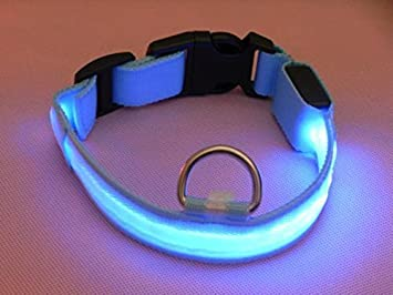 Lesypet Hund Led Collar Light Flashing Sicherheit Led Halsband Nylon Verstellbare Breite