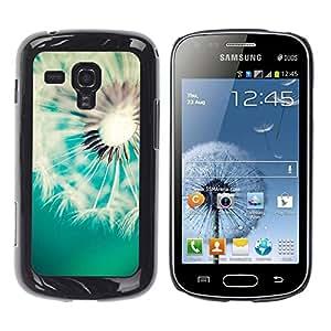 Be Good Phone Accessory // Dura Cáscara cubierta Protectora Caso Carcasa Funda de Protección para Samsung Galaxy S Duos S7562 // Dandelion Teal White Spring Summer