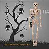 Labu Store Horrible Halloween Skeleton Model Small Size Movable Skull Skeleton Halloween Hanging Props Party Scary Decoration
