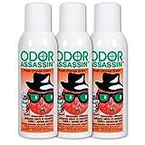 Odor Assassin Orange, Set of 3