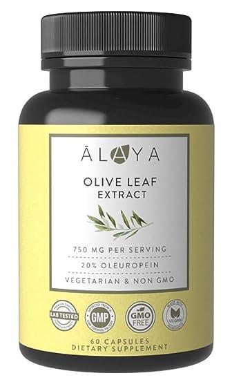 Amazon com: Alaya Naturals - Olive Leaf Extract Capsules, 20