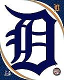 "Detroit Tigers 2016 MLB Team Logo Photo (Size: 8"" x 10"")"
