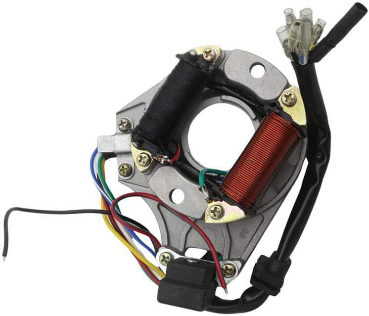 Shiwaki Stator Generator Magneto Coil Para Kazuma 50cc 70cc 90cc 110cc ATV