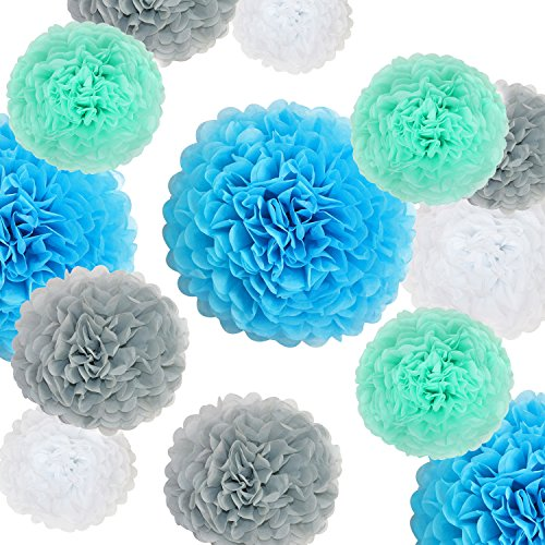 VIDAL CRAFTS 20 Pcs Tissue Paper Pom Poms Kit  (14