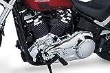 Kuryakyn 7185 Motorcycle Accent