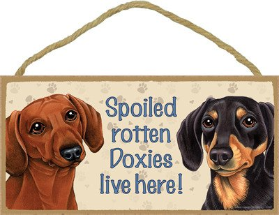 (SJT ENTERPRISES, INC. Spoiled Rotten Doxies Live here (Black & tan and red-Brown Dachshunds) Wood Sign Plaque 5