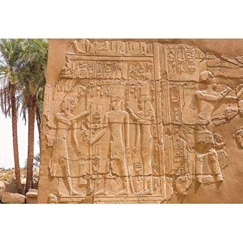 (Yeele 6x4ft Egypt Temple Ruins Backdrop for Photography Ancient Egyptian Mural Stone Carving Wall Background Hieroglyphics Gods Engraved Art Adult Kids Photo Booth Shoot Vinyl Studio Props)