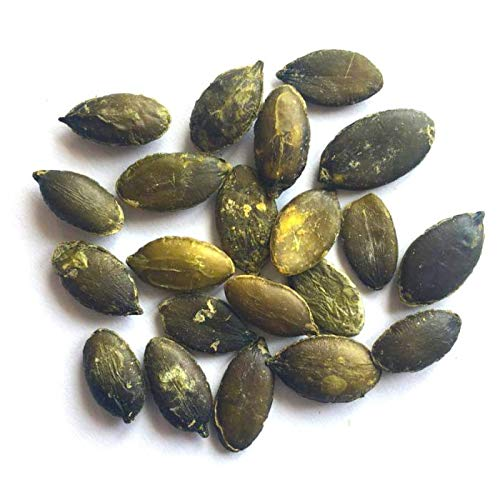 Organic Dry Roasted Pumpkin Seeds with Sea Salt, 1 Pound — Non-GMO Kernels, Pepitas, Kosher, Vegan, No Shell, Healthy Snack, Bulk by Food to Live (Image #4)