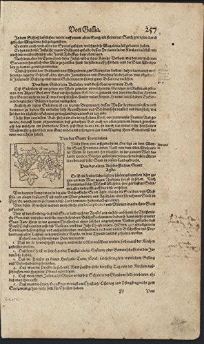 Engraved Vine - Grape Vines 1628 Munster original antique engraved print
