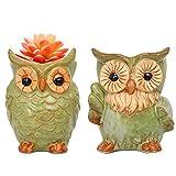 ROSE CREATE 2pcs 5.3 Inches Big Owl Planters