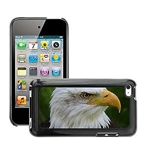 Cas Coq Case Cover // M00147971 Ave de rapiña Raptor águilas calvas // Apple ipod Touch 4 4G 4th