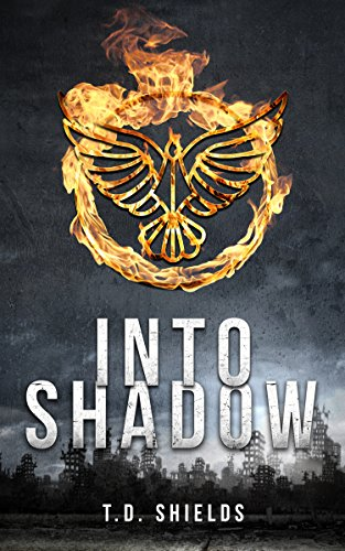 Into Shadow (Shadow and Light Book 1) by [Shields, T.D.]