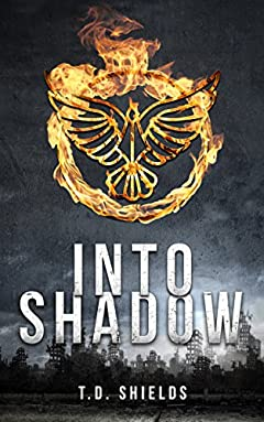 Into Shadow (Shadow and Light Book 1)