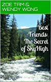 Best Friends:The Secret of SkyHigh (no illustrations) (Best Friends: The Secrets of SkyHigh)