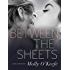 Between the Sheets (The Boys of Bishop Book 3)