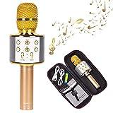 Best Bluetooth Microphones - HAITRAL Wireless Karaoke Microphone Portable Bluetooth Microphone Review
