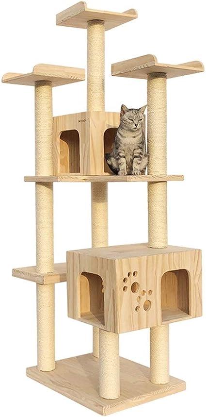 Escalada del gato Gato Grande Gimnasio De La Selva Torre De ...