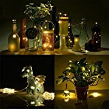Wine Bottle Lights Battery Powered, CieKen 1M String Fairy Light 10 LED Battery Operated Xmas Lights Party Wedding Lamp Copper Wire Fairy Lights for Bottle DIY, Party, Decor, Christmas, Wedding