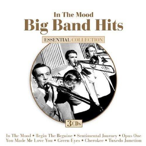 In The Mood: Big Band Hits by Dynamic/Mvd