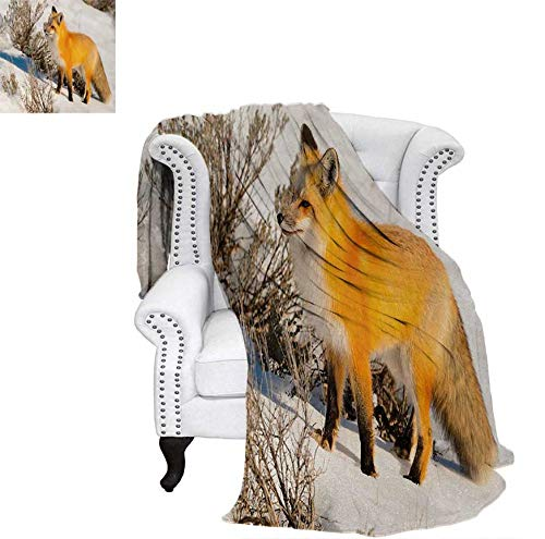 Lightweight Blanket Lovely Fox Characters Sleeping Reading Romantic Couple Nature Collection Kids Comic Custom Design Cozy Flannel Blanket 60'x36' Multicolor
