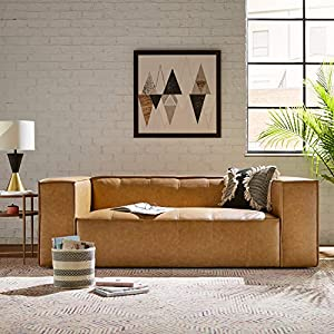 Rivet Thomas Genuine Leather Modern Sofa Couch 6