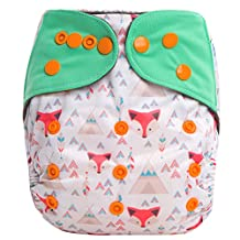 "HappyEndings ""Night, Night""» Charcoal Bamboo All In One Diaper (+Pocket & 5 Layer Charcoal Bamboo Insert) ""Tribal Fox"""