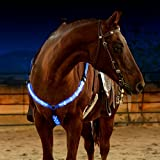 LED Horse Breastplate Collar - USB Rechargeable - Best High Visibility Tack For Horseback Riding - Adjustable, Sturdy &...