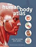 img - for The Human Body Atlas: How the human body works book / textbook / text book